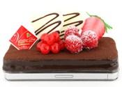 チョコレートケーキカバー