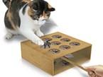 Cat Whack a Mole